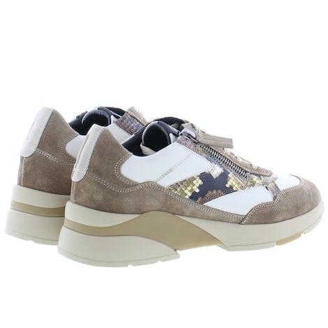 DL Sport 4852 tasso Sneakers Sneakers