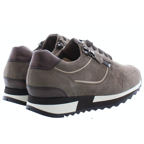 Hassia 302022 1999 taupe Sneakers Sneakers