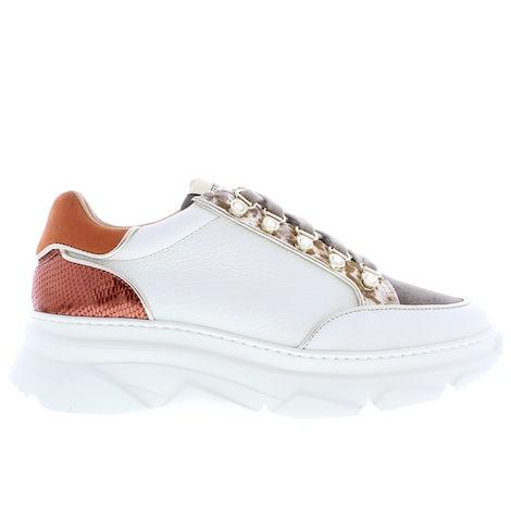 Stokton 424-D var. orange Sneakers Sneakers