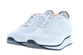 Fred Breton 101010083 white Damesschoenen Sneakers