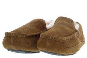 Ugg Ascot 1101110 CHE Herenschoenen Pantoffels
